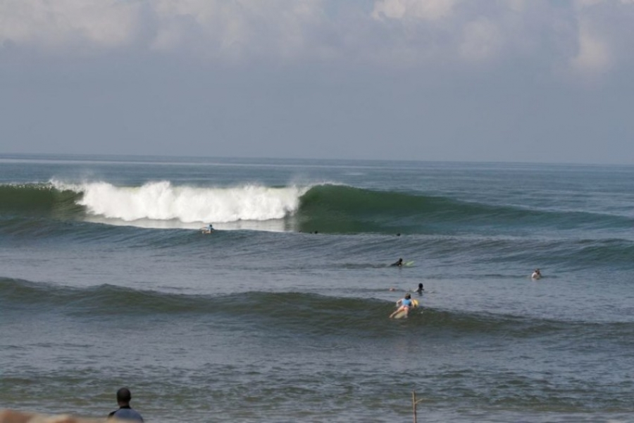 Bull Shark Attack A Surfer In Balian