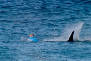 Mick Fanning escapes a shark during J-Bay final