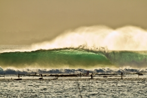 """INDONESIA IS THE WORLD'S BEST SURFING COUNTRY"""