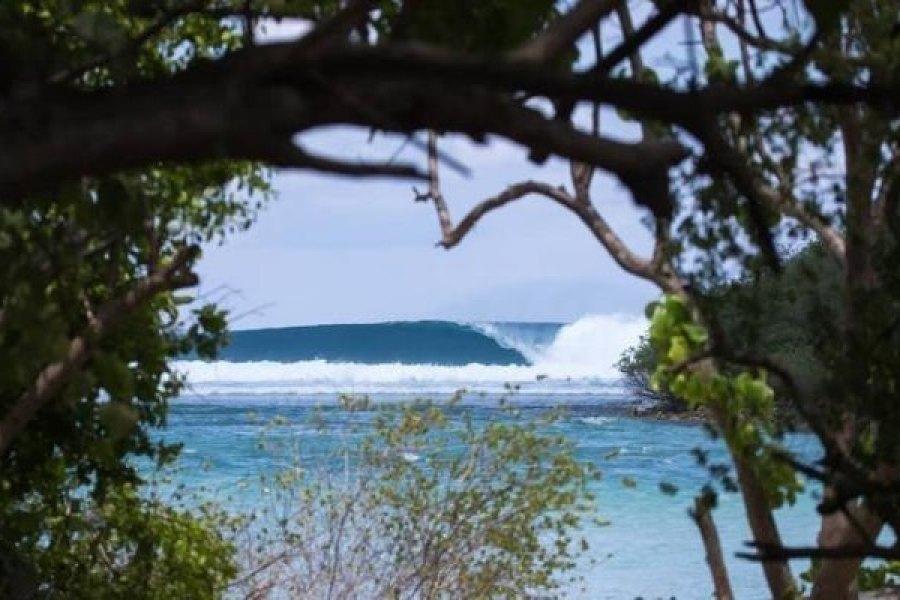 Campanha da STW quer salvar as ondas das Maldivas
