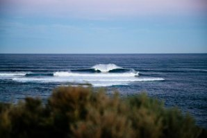 Willow Hardy, Jacob Willcox e Cyrus Cox conquistam wildcards para o Margaret River Pro