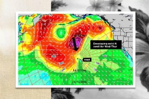 LAY DAY NO REEF HAWAIIAN PRO